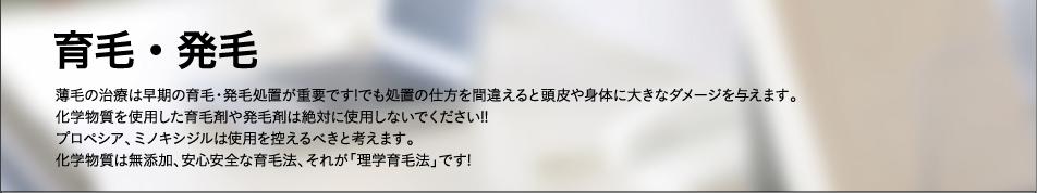 """""""育毛・発毛"""